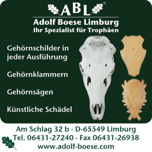 Adlof-Boese-EKF